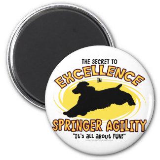 Agility Springer Secret Magnet