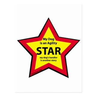 Agility Star Postcard