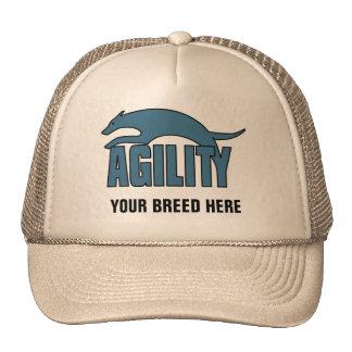 Agility Stylized Design Mesh Hat