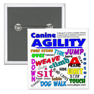 Agility Terms Pinback Button