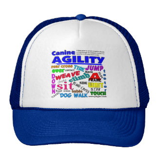 Agility Terms Trucker Hat