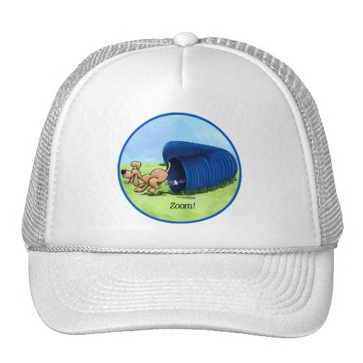 Agility Tunnel hat