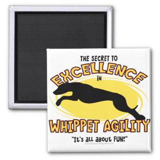 Agility Whippet Secret Magnet