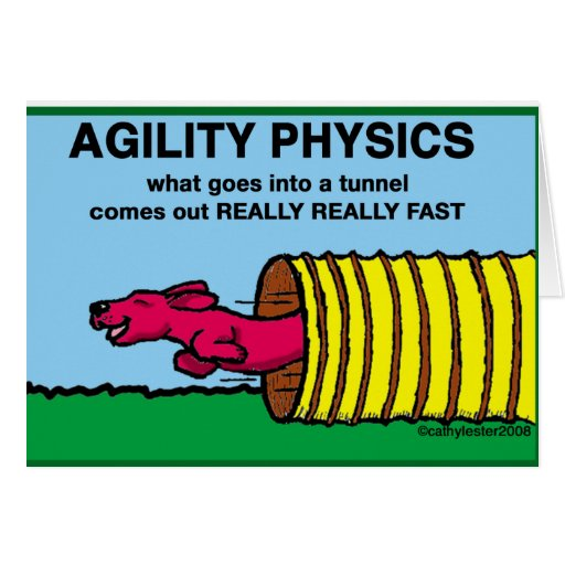 AgilityPhysics Greeting Cards