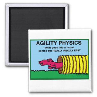 AgilityPhysics Magnet