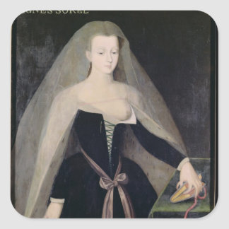 Agnes Sorel  Favourite of Charles VII Stickers