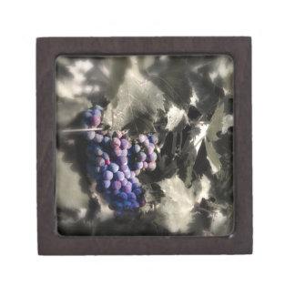 Agolpamiento en el viñedo de la tubería de los sót caja de joyas de calidad