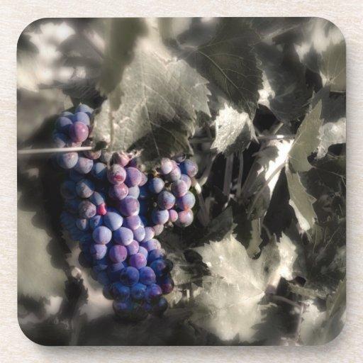 Agolpamiento en el viñedo de la tubería de los sót posavasos