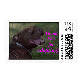¡Agradezca Youfor adoptando