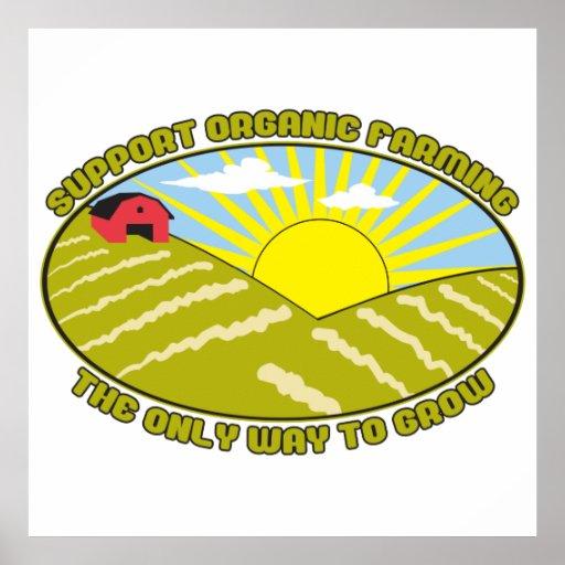Agricultura biológica de la ayuda posters