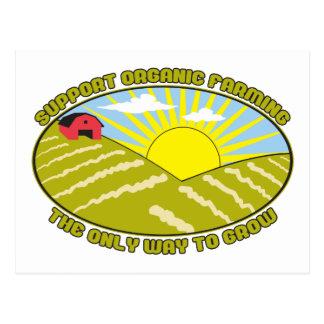 Agricultura biológica de la ayuda tarjetas postales