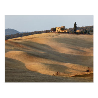 Agricultural field at sunset, Val d'Orcia, Tusca Postcard