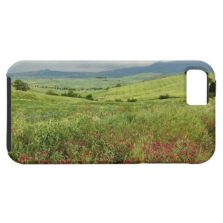 Agricultural field, Tuscany region of Italy. iPhone SE/5/5s Case
