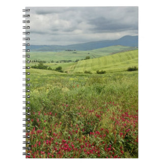 Agricultural field, Tuscany region of Italy. Spiral Notebooks