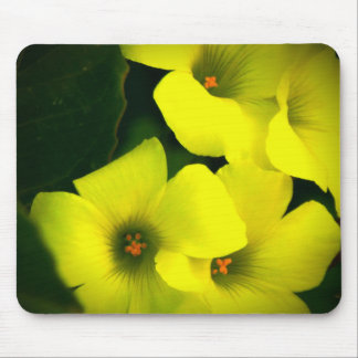 agrie los sollozos mouse pad