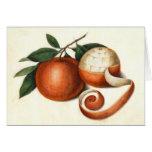 Agrios del vintage - naranjas chinos antiguos tarjeta de felicitación