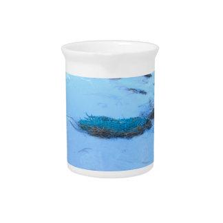 Agua azul del alfarero de Phill Jarras