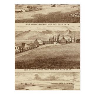 Agua blanca, ranchos de Saucelito Tarjeta Postal