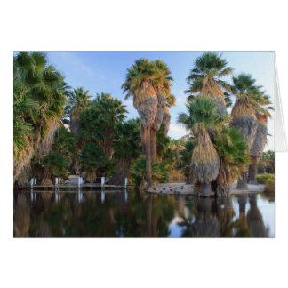 Agua Caliente Park Card