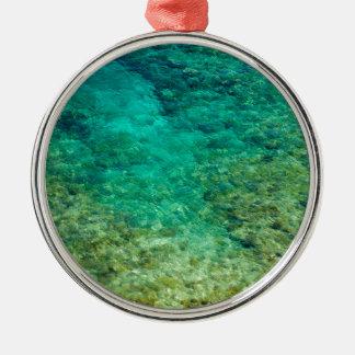 Agua clara baja con el coral adorno redondo plateado
