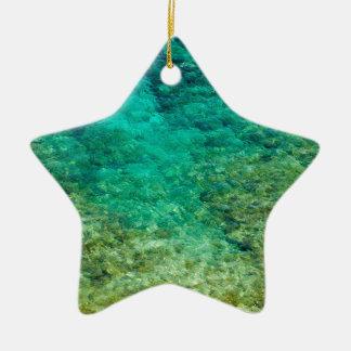 Agua clara baja con el coral adorno de cerámica en forma de estrella