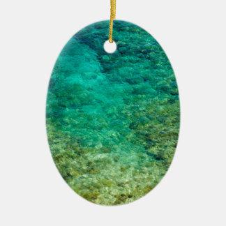Agua clara baja con el coral adorno ovalado de cerámica