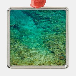 Agua clara baja con el coral adorno cuadrado plateado
