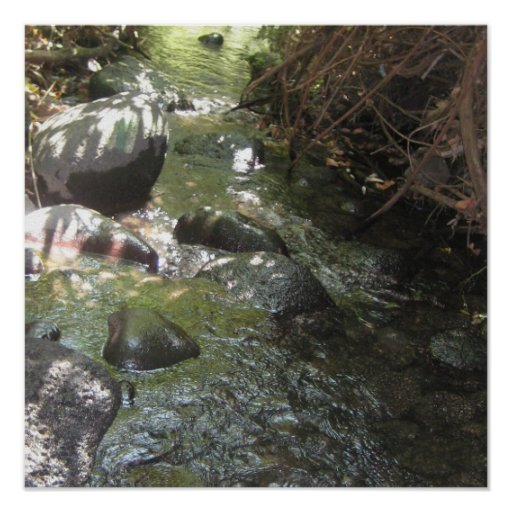 agua corriente póster