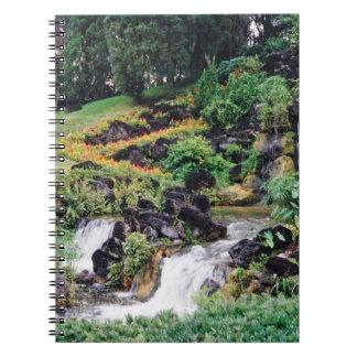 Agua curativa notebook