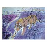 agua de la travesía del tigre tarjetas postales