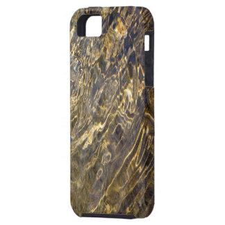 Agua de oro 2 de la fuente iPhone 5 funda