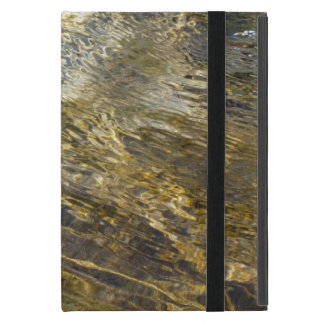 Agua de oro de la fuente iPad mini protectores