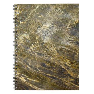 Agua de oro de la fuente libros de apuntes