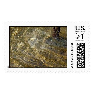 Agua de oro de la fuente - sello grande