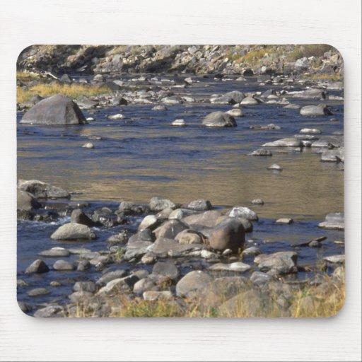 Agua de piedra tapete de raton