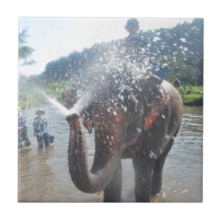 Agua de rociadura del elefante tejas