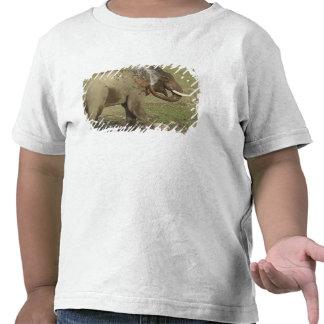 Agua de rociadura del elefante indio/asiático, camiseta
