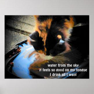 Agua del cielo póster
