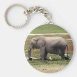 agua del elefante llaveros personalizados