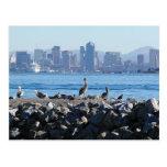 Agua del horizonte de la ciudad de los pájaros de  tarjeta postal