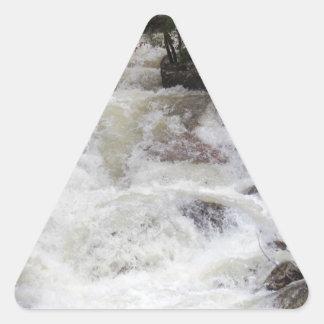 Agua del rugido en Rocky Pegatina Triangular