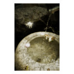 Agua del zen posters