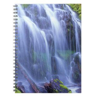 Agua dulce de la primavera que fluye sobre musgo libros de apuntes con espiral