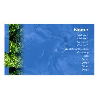 Agua e hierba - negocio tarjetas de visita