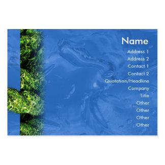 Agua e hierba - rechonchas tarjetas de visita grandes