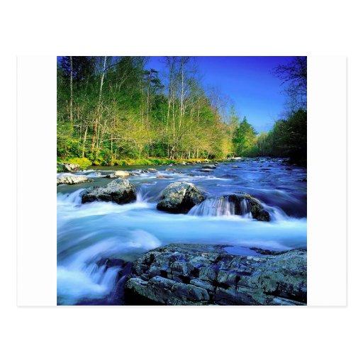 Agua el río Little Pigeon Tarjetas Postales
