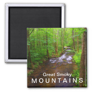 Agua en el parque nacional de Great Smoky Mountain Imán Cuadrado