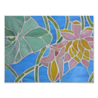Agua Lillies 2 Fotos