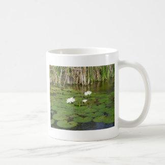 Agua Lillies Tazas De Café