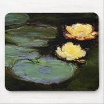Agua-Lirios: 1897-98 de Monet Alfombrilla De Raton
